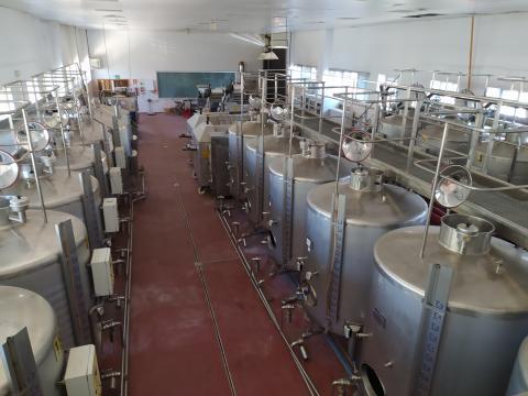 Bodega del Centro de Referencia Nacional de Vinos y Aceites